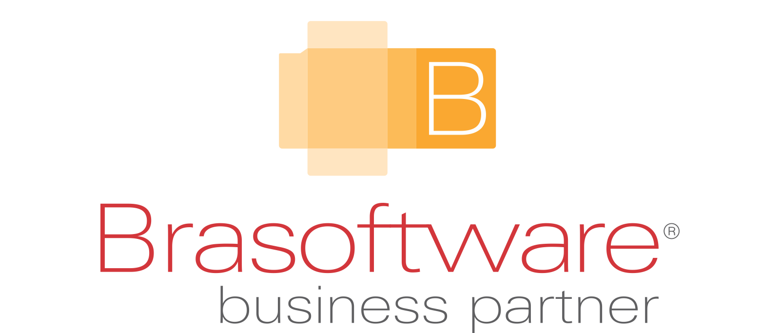 Logo Brasoftware Partner